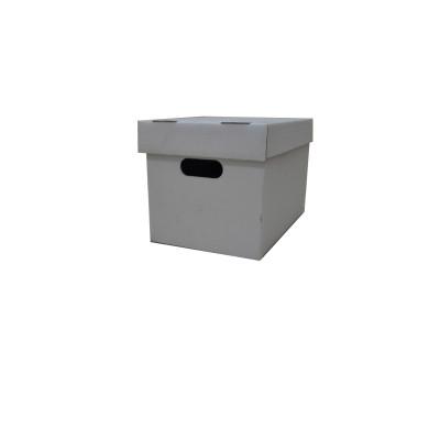 carton771