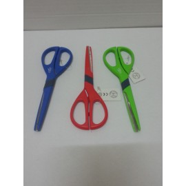 a pair of scissors